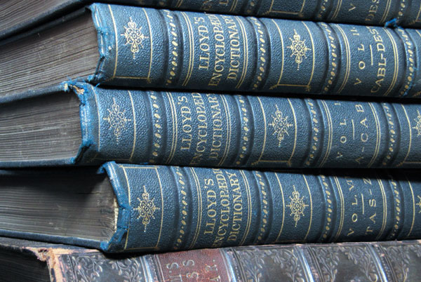 Lloyds Encyclopaedic Dictionary set