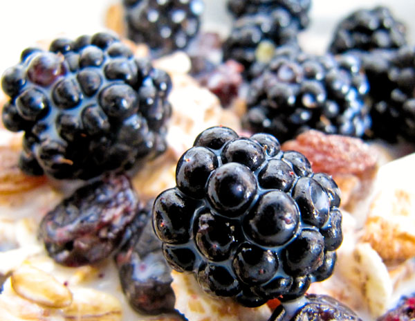 Blackberries with muesli