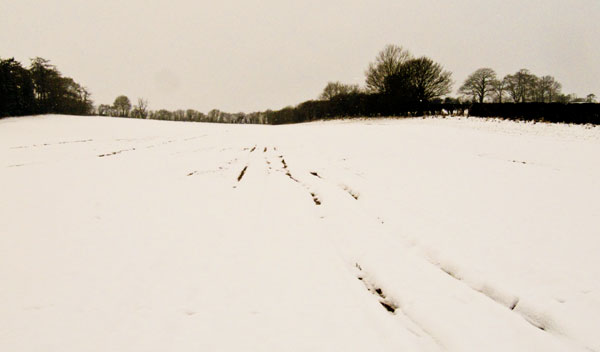 Snowscape ~ Herefordshire